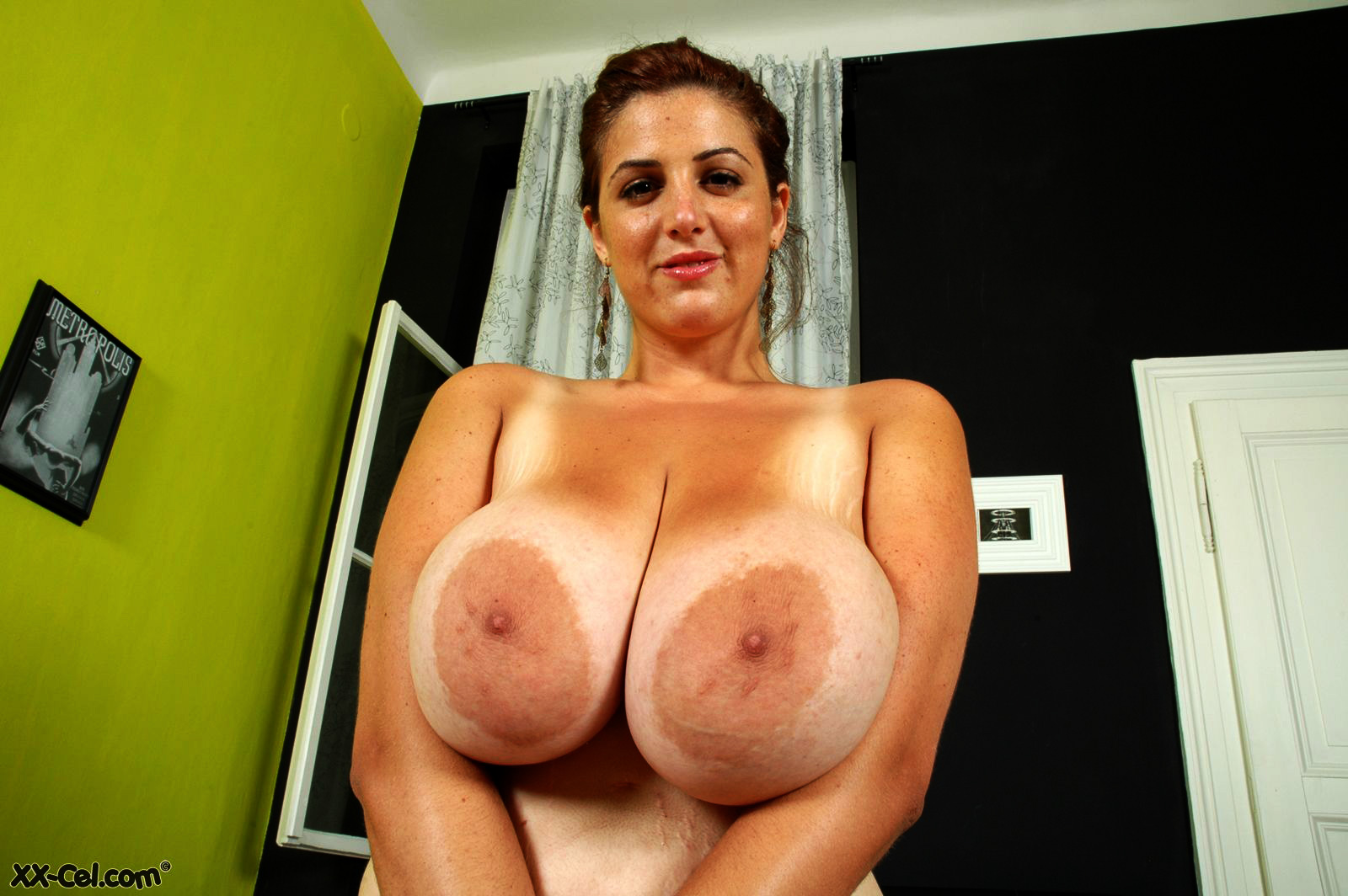 Breast archive matures