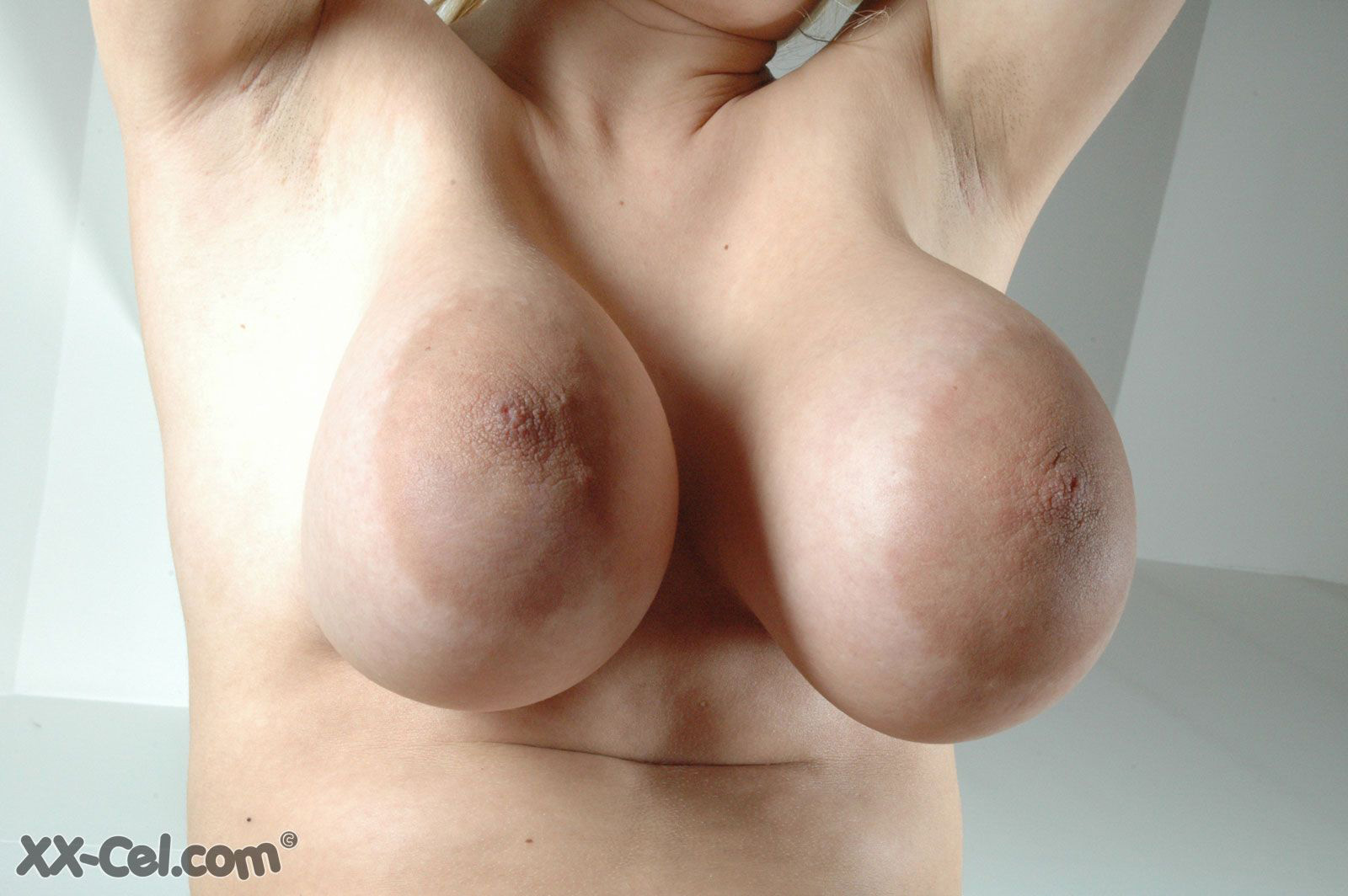 ALWAYS big breast archive love find