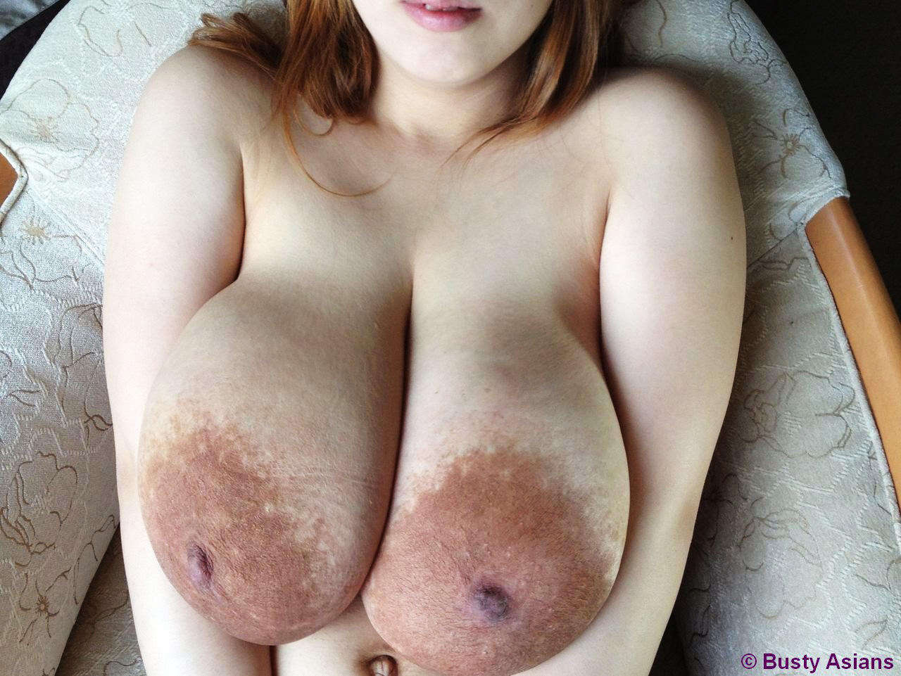 2006 archive asian busty